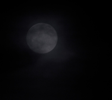 A moon for Wereing.